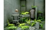 Surrealism – chủ nghĩa siêu hiện thực