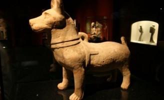 Triểm lãm gốm sứ Trung Hoa tại viện bảo tàng Thượng Hải- Phần II