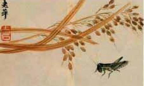 Họa sĩ Tề Bạch Thạch 齊 白 石 (1863-1957)