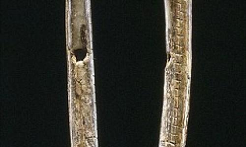 Nhạc cụ lâu đời nhất hơn 40.000 năm