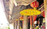 Việt Nam qua ghi chép của người phương Tây: Vua, chúa thiết triều