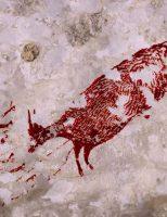 Bức tranh tường lâu đời nhất (44.000 năm) đang sụp đổ do khai thác